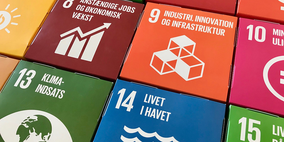 Netværk om Grøn Vækst og FNs Verdensmål · 12. juni