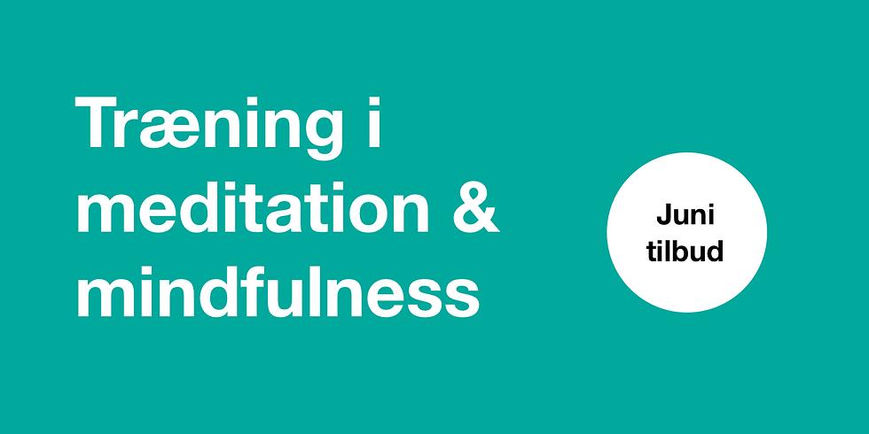 EFTERMIDDAGS MEDITATION & MINDFULNESS