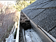 Gutter Roof Cleaning Kincumber Pearl Beach