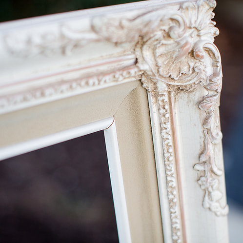 20x24 ornate cream frame