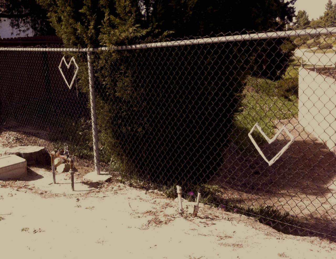 Yarn Bombing@Village Dog Park