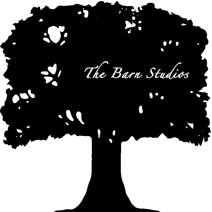 The Barn Studios logo