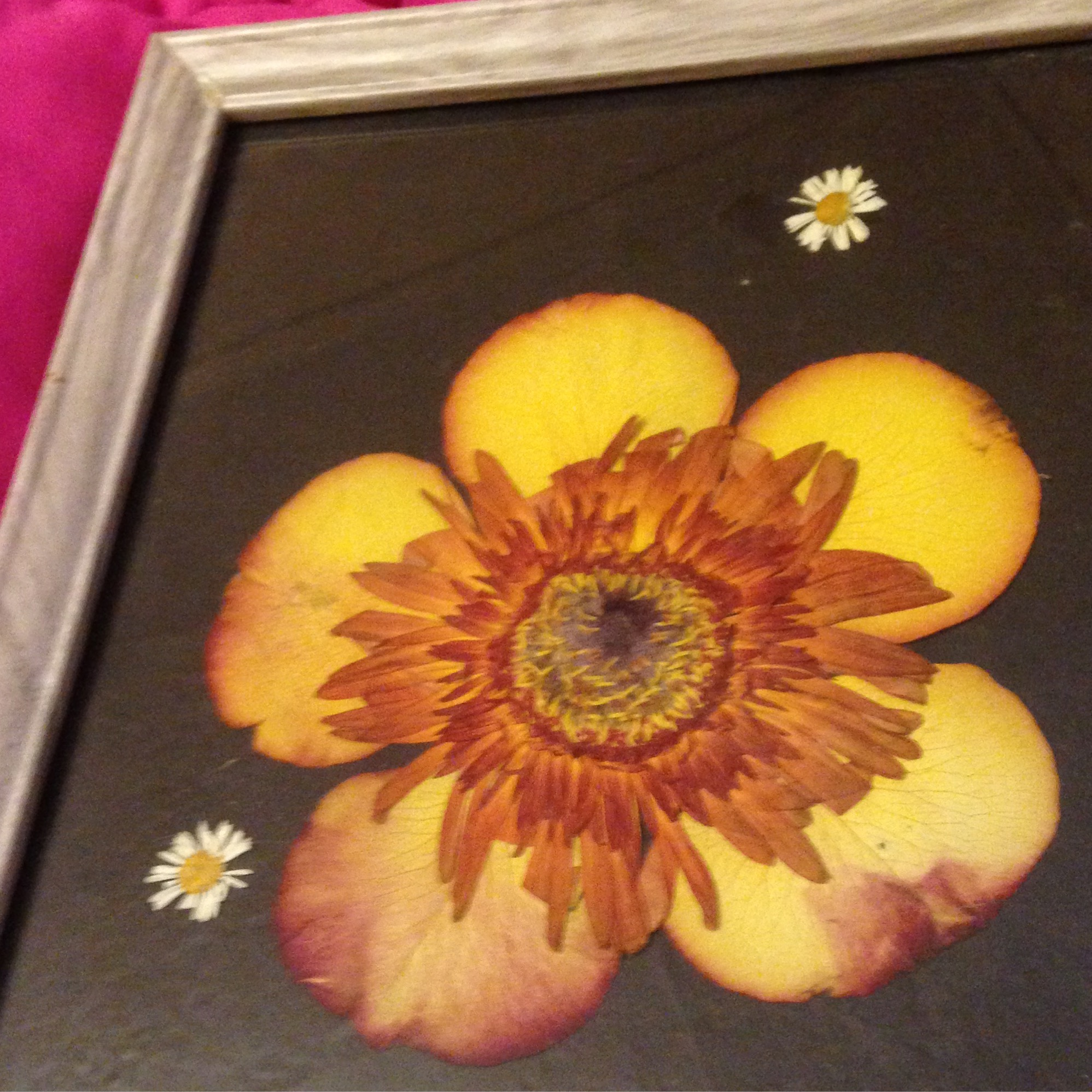 sunburst pressed flower art