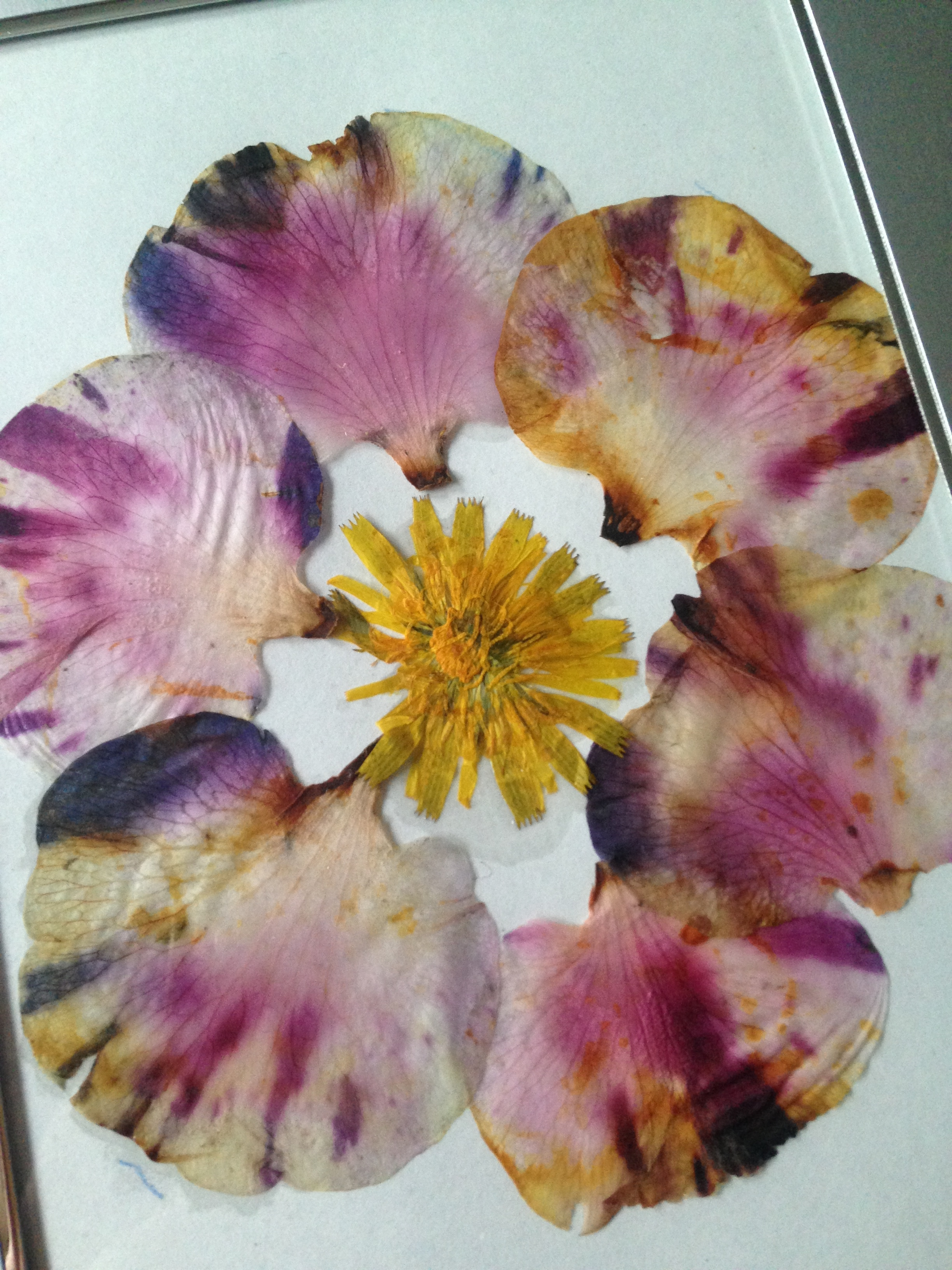 tiedye petals flower art