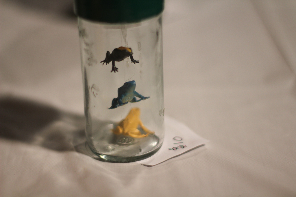 leap frog miniature