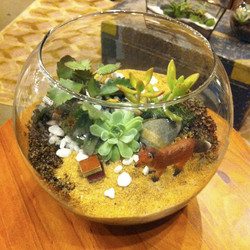 fox bowl miniature