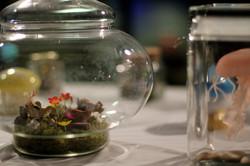 bell jar woods miniature