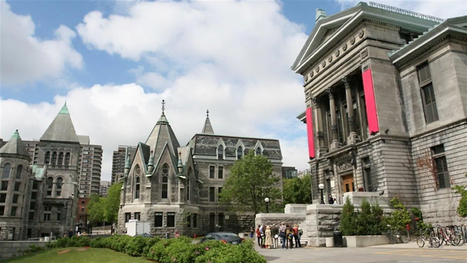 mcgill-universite-campus.webp