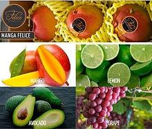 Fruitmarket.jpg