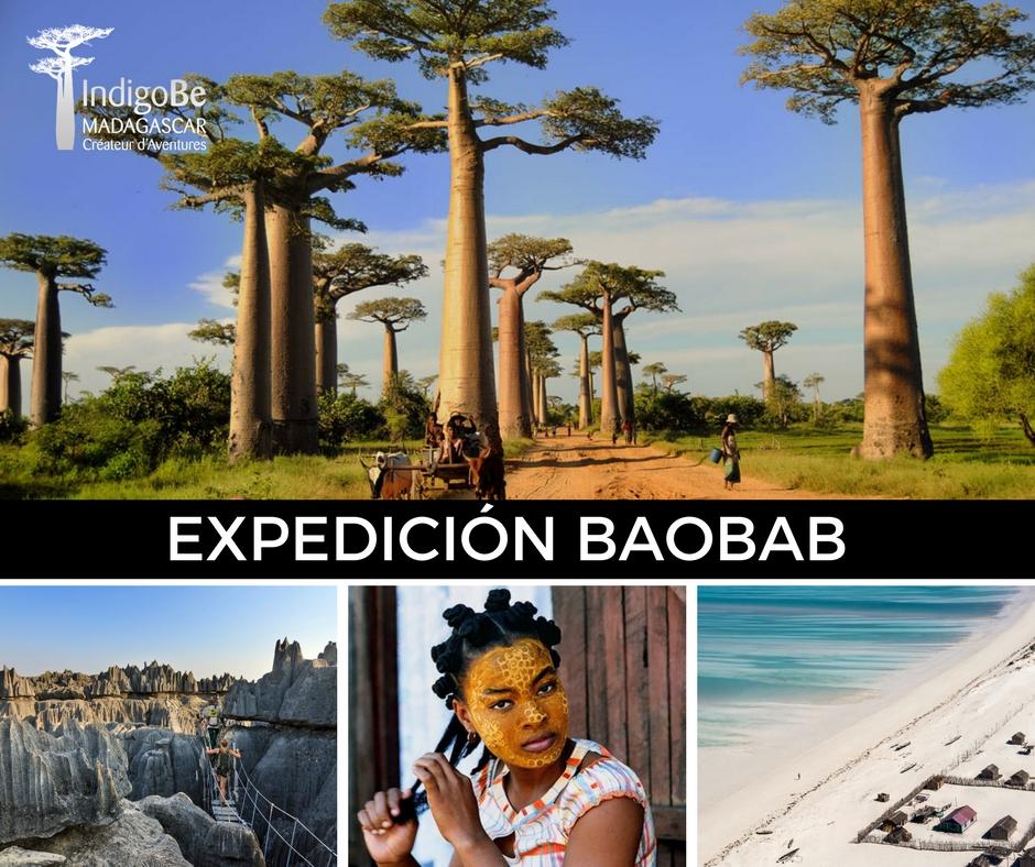 Expedición Baobab