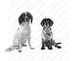 Milo and Riley  (1).png