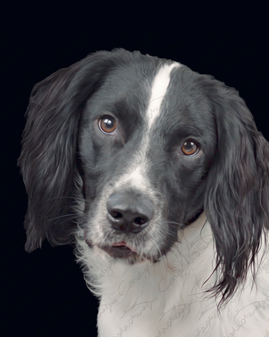 Riley  (7).png