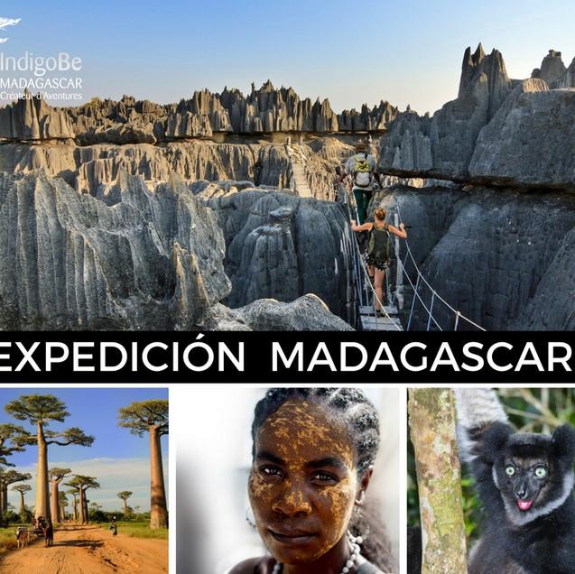 EXP. MADAGASCAR(1)