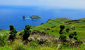 Graciosa - view from the Caldeira trail.