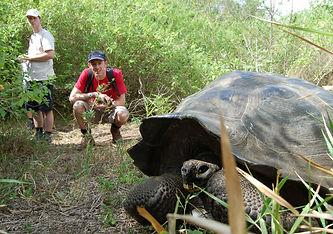 Galapagos Passion Excursions.jpg