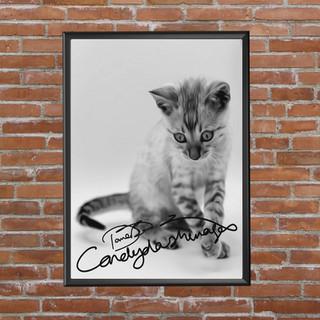 Casper signed  frame nbrick wall.jpg