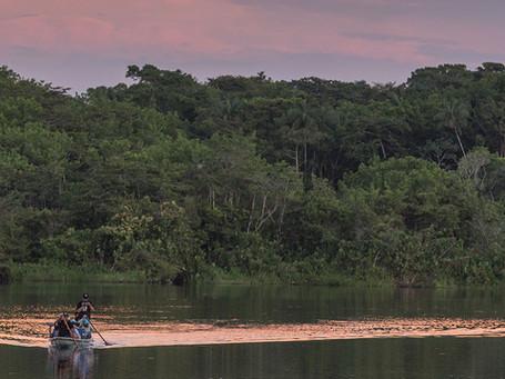 Yasuni, Amazonas