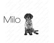 Milo  (17).png