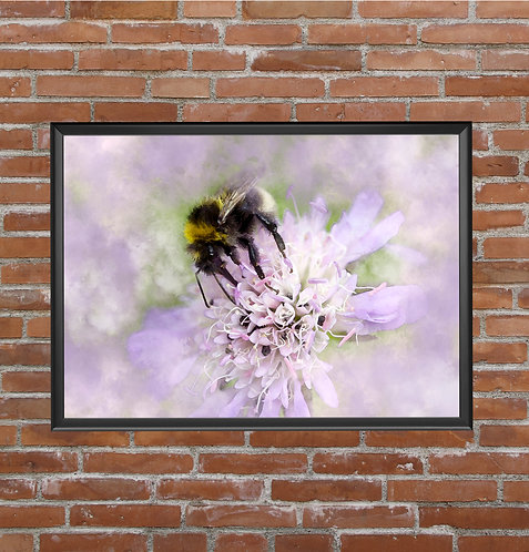 A4 PRINT BEE ON FLOWER