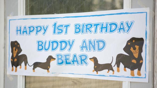 Buddy & Bear    (1).jpg