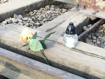 Visitar Auschwitz-Birkenau (Cracovia)
