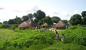 66_Casamance_village.jpg