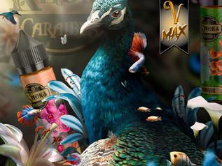 VMAX 5.jpg