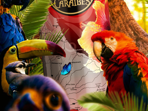 Barbade Piafs.jpg