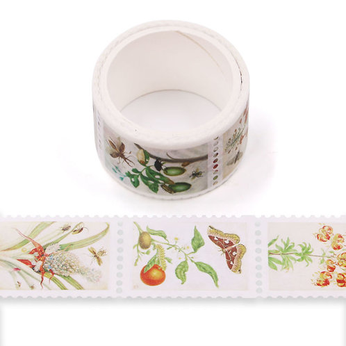 Masking tape  temples timbres prédécoupés plantes colorés 25mm x 3m