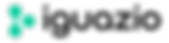 Iguazio logo light png.png