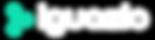 Iguazio logo white-01.png