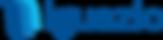 Iguazio_Color_RGB_NoTag_150_SM.png