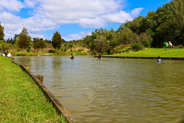 Waitangi Soda Springs