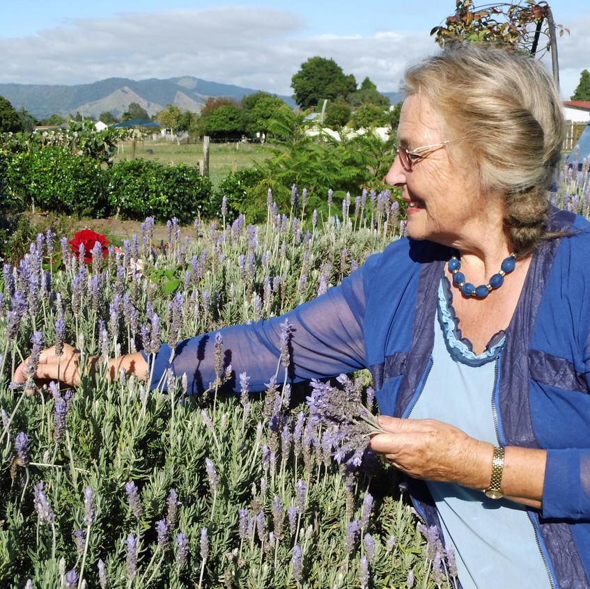 Shona in the Lavender Garden