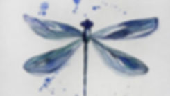 libellula1.jpg
