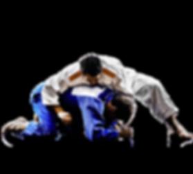 Adult-Judo.png