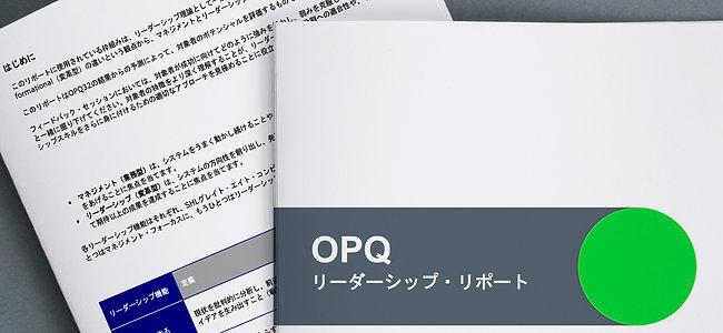 """コンピテンシープロファイル """"リーダーシップ"""" +広範な総合レポート"""