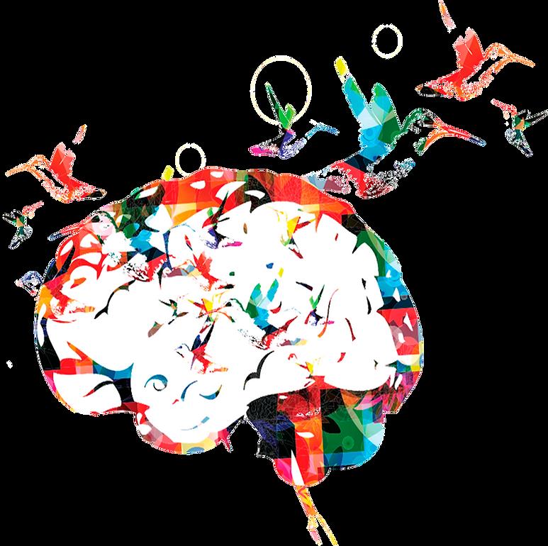 Brain-mit-transparenz.png