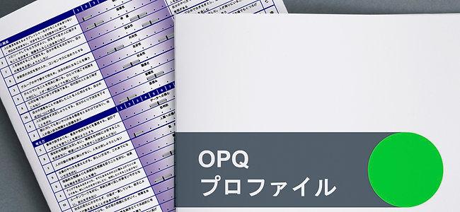 COMBO:コンピテンシープロファイル+能力テスト+ショートレポート
