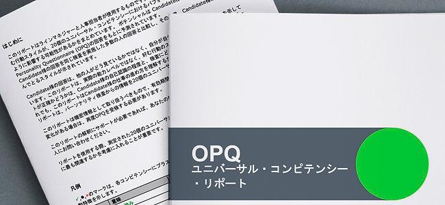 コンピテンシープロファイル(OPQ) +詳細なレポート