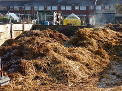 Compost available