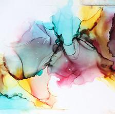 Veins of a rainbowfish