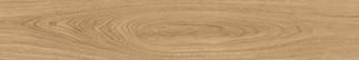 African Walnut Almond