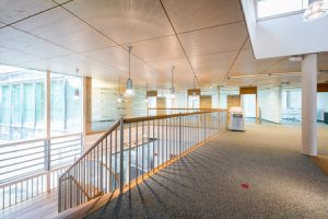 Are Your Carpets Affecting the Indoor Air Quality of Your Commercial Business?