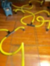 Drying a water damaged Oak wood floor