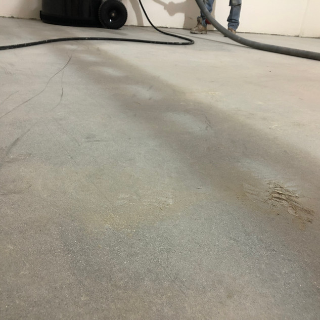 Concrete floors are just the best!