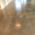 Light grey polished concrete floor