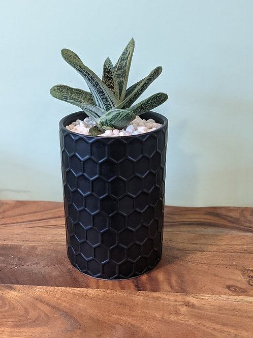 Black Honeycomb Canister