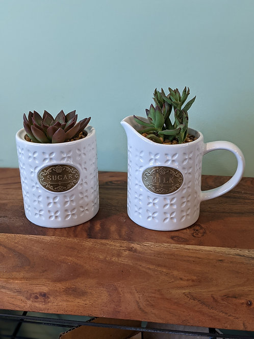 Sugar & Milk Canisters - Price for 2pc
