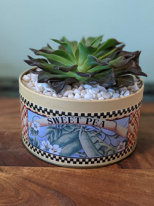 Sweet Pea Tin